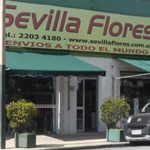 SEVILLA FLORES