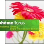 BOHEME ARTE Y FLORES