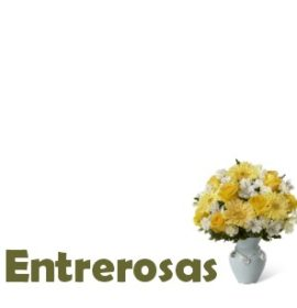 ENTREROSAS