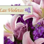 FLORERIA LAS VIOLETAS