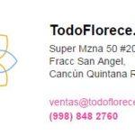 TODO FLORECE CANCUN