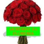 FLORISTERIA GUSTAVO 1