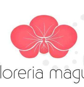 MAGUI FLORERIA